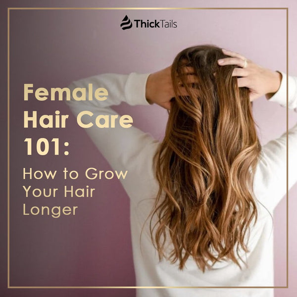 Female Hair Care 101:  How to Grow Your Hair Longer | ThickTails