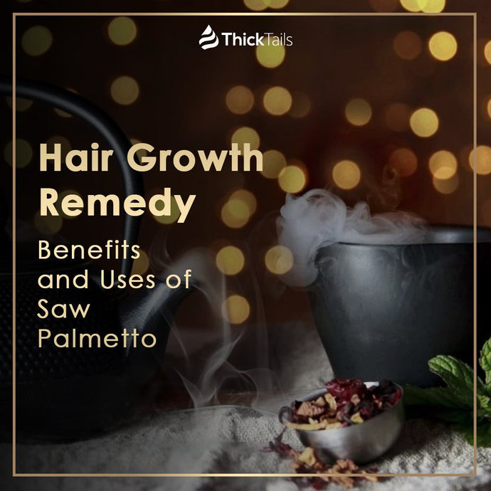 Hair Growth Remedy: Benefits and Uses of Saw Palmetto