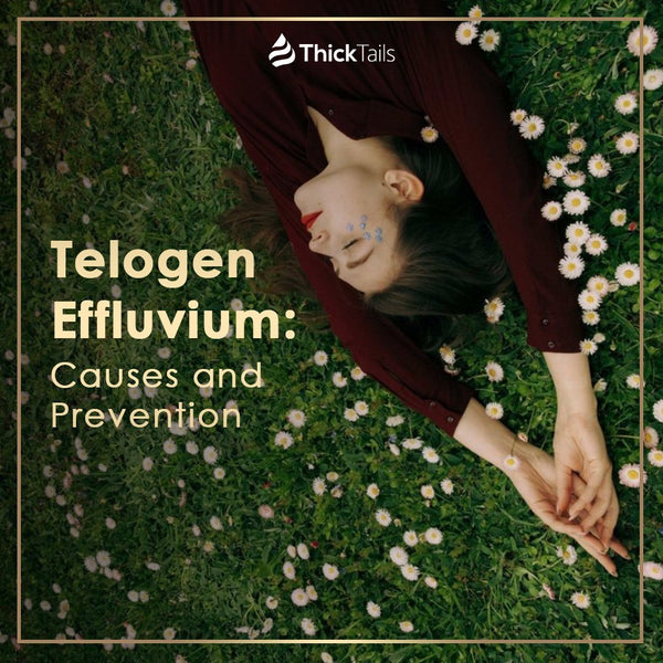 Telogen Effluvium: Symptoms, Causes, and Treatment | ThickTails