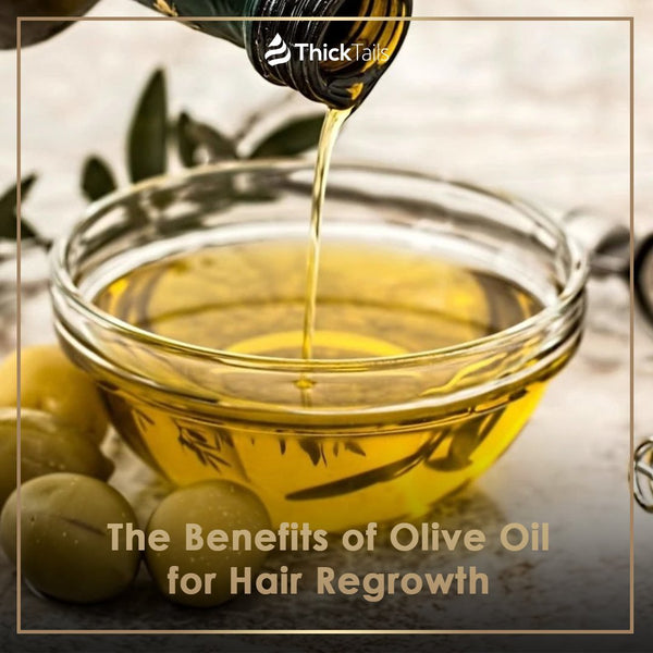 The Benefits of Olive Oil for Hair Regrowth | ThickTails