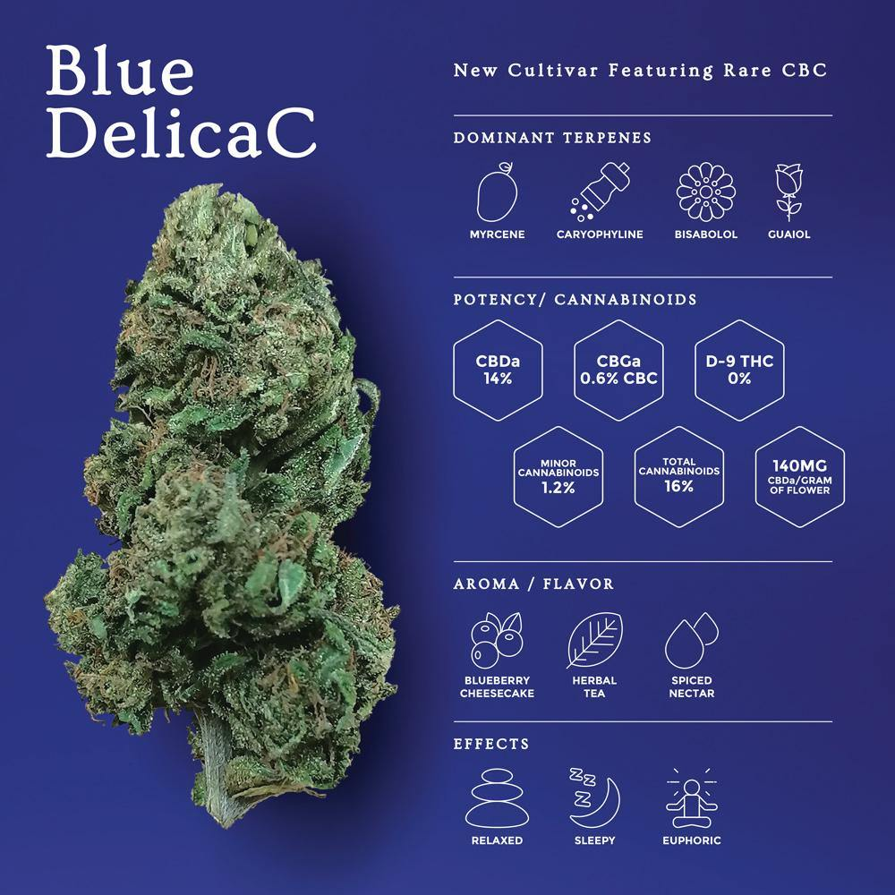 Blue DelicaC | New Hemp Flower - OGR LLC