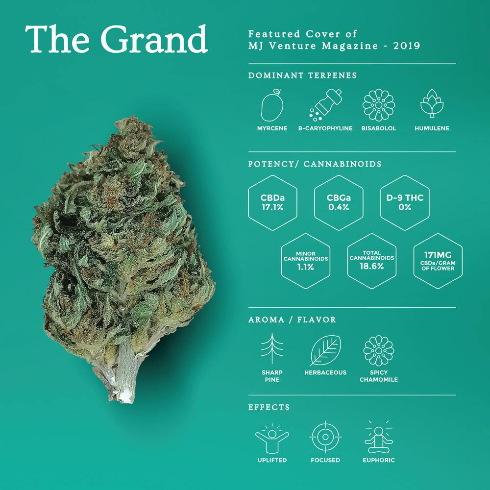 The Grand | New Hemp Flower - OGR LLC