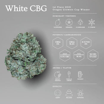 White CBG | New Hemp Flower - OGR LLC