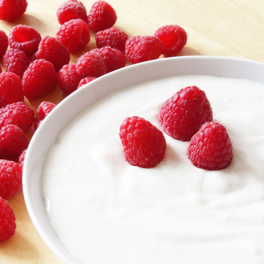 Fermenting Series: Yogurt