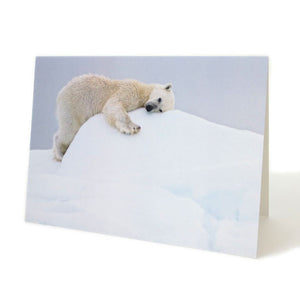 Polar Bear Greeting Card by Lara Wilson
