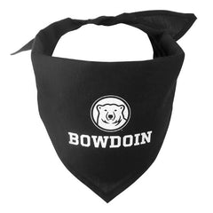 Pet Bandana from All Star Dogs