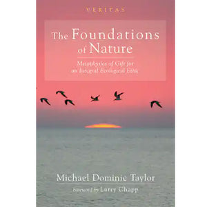 Foundations of Nature, by Michael Dominic Taylor