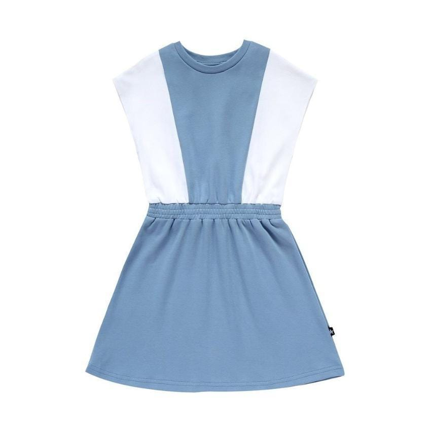 Petit Clair Panel Dress  JellyBeanz Kids