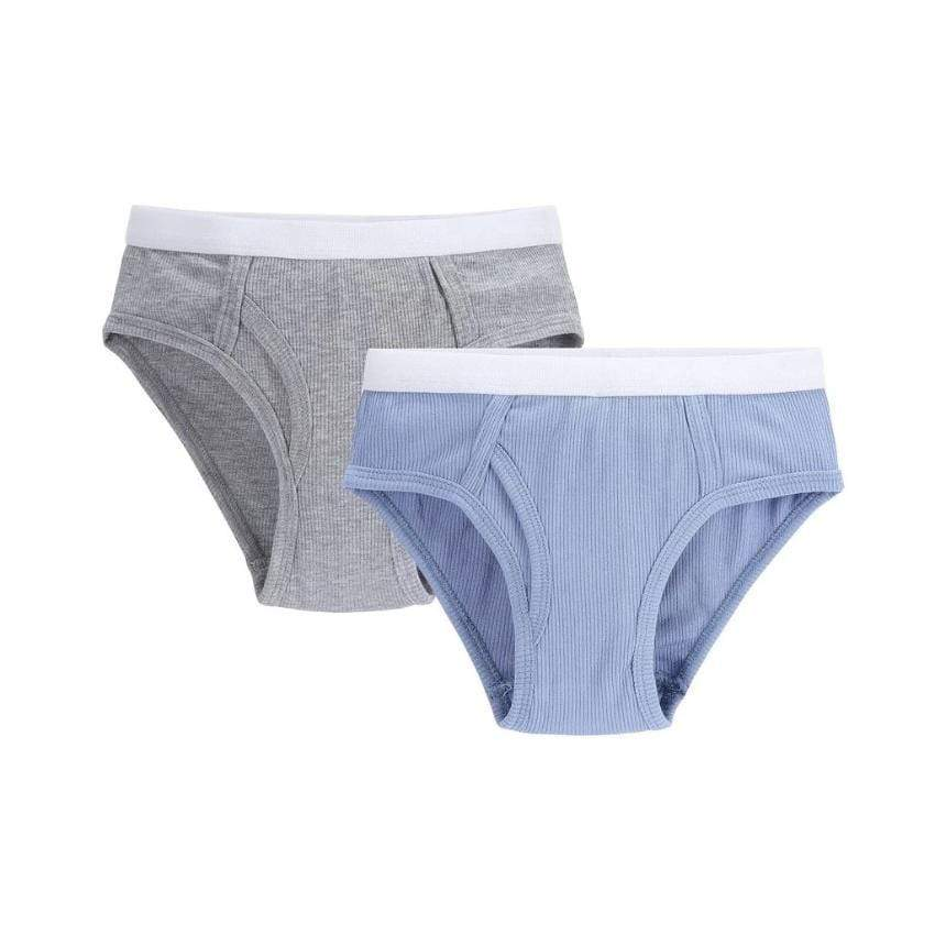 Petit Clair Underwear Jellybeanzkids Petit Clair Boys 2pc Colored Ribbed Brief