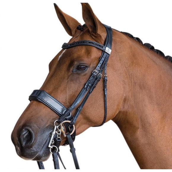Fairfax Double Bridle