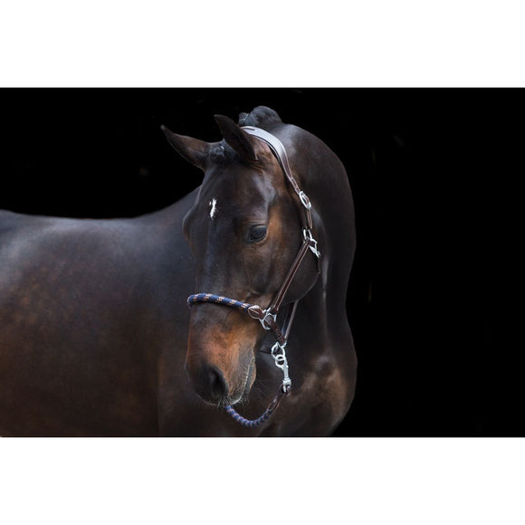 PS Of Sweden Rope Halter & Leadrope