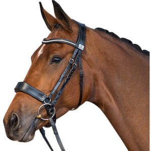 Fairfax Snaffle Bridle - Cavesson