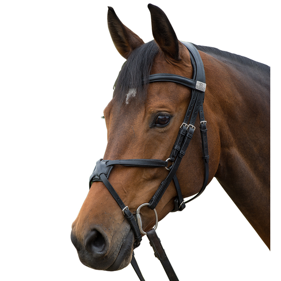 Fairfax Snaffle Bridle - Grackle