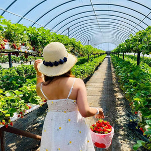 New Hours for Strawberry Season!