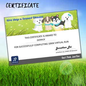 Save Our Strays Virtual Run