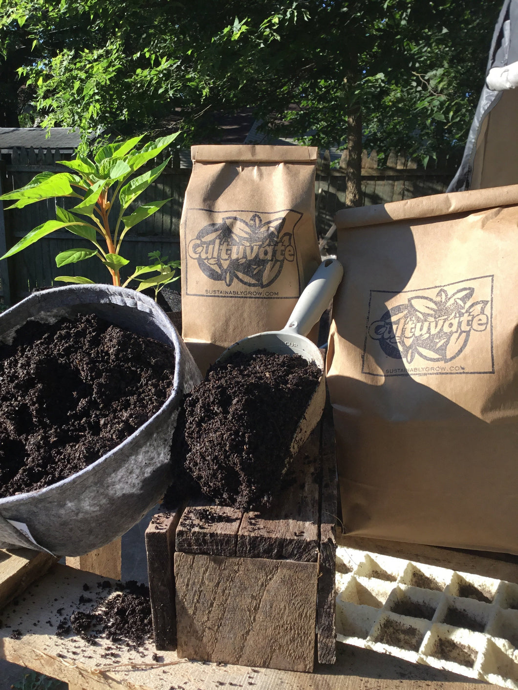 Tomato Seed Pack w/Root Pouch + Psychedelic Compost