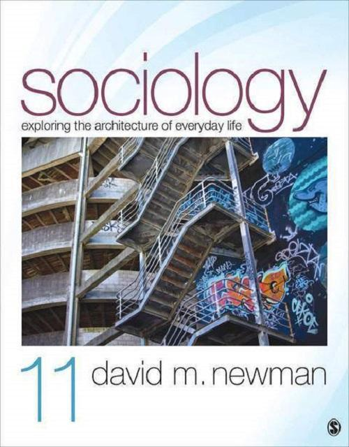 Sociology: Exploring the Architecture of Everyday Life 11th Edition (Ebook, PDF)