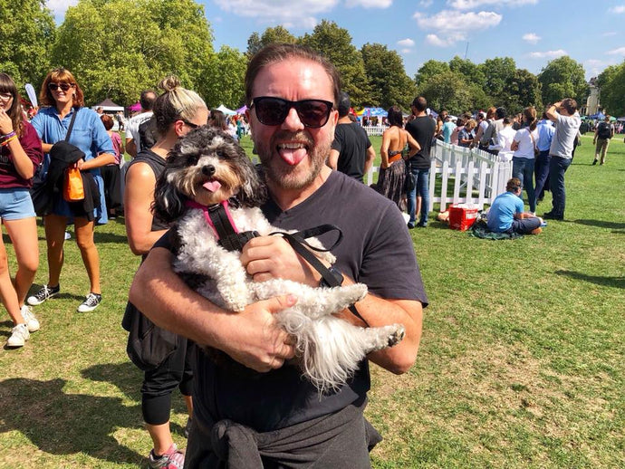 PupAid 2018 - The Year Of Lucy's Law
