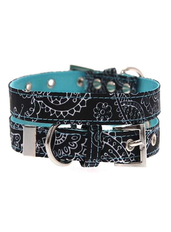 Blue & Black Paisley Dog Collar