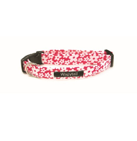 Cerise Pink Daisies Dog Collar