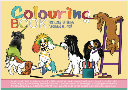 Pudding And Friends Colouring Book
