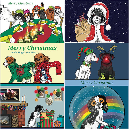 Christmas Card Selection Pack