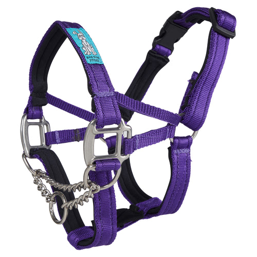 Dog Head Collar Purple (with chain)