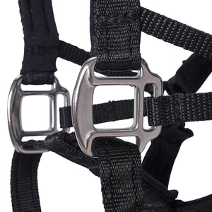 Dog Head Collar Black (without chain)