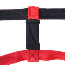 Dog Head Collar Red (without chain)