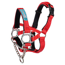 Dog Head Collar Red (with chain)