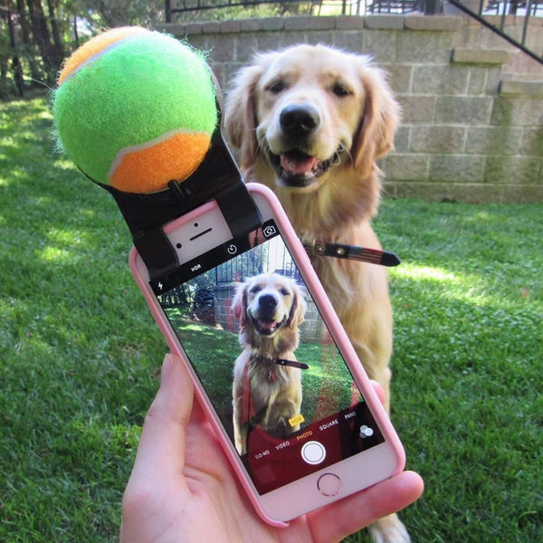 Clip-on Dog Selfie Ball