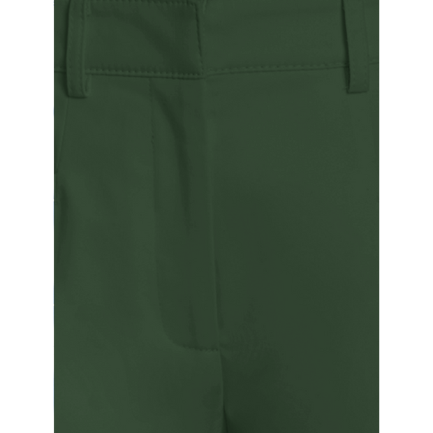detail of Cactus Green Phoenix Pant Classics By Worth Worth Collection