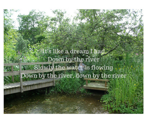 Down by the River Lyrics