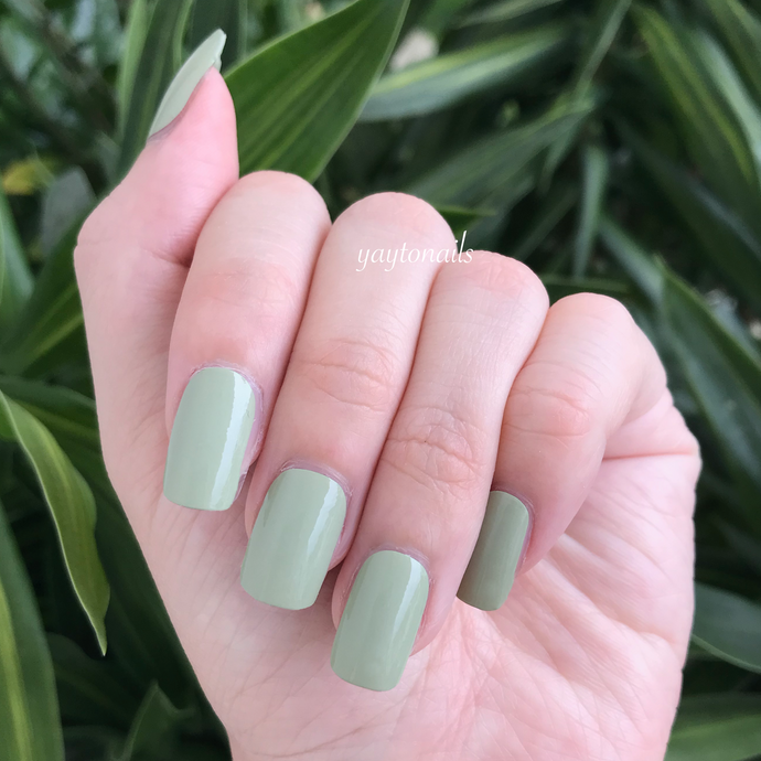 Solid - Sage - Yay to Nails
