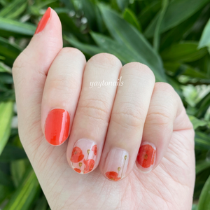 Poppy (transparent base) - Yay to Nails