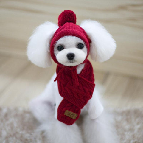 Christmas Wool Knitted Cap Dog Hat  and Scarf