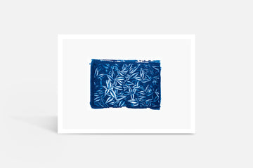 Wild Leaves Cyanotype