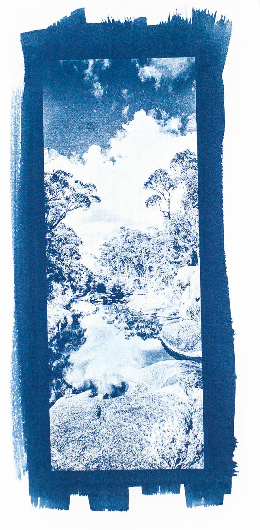 Creek Bed Cyanotype