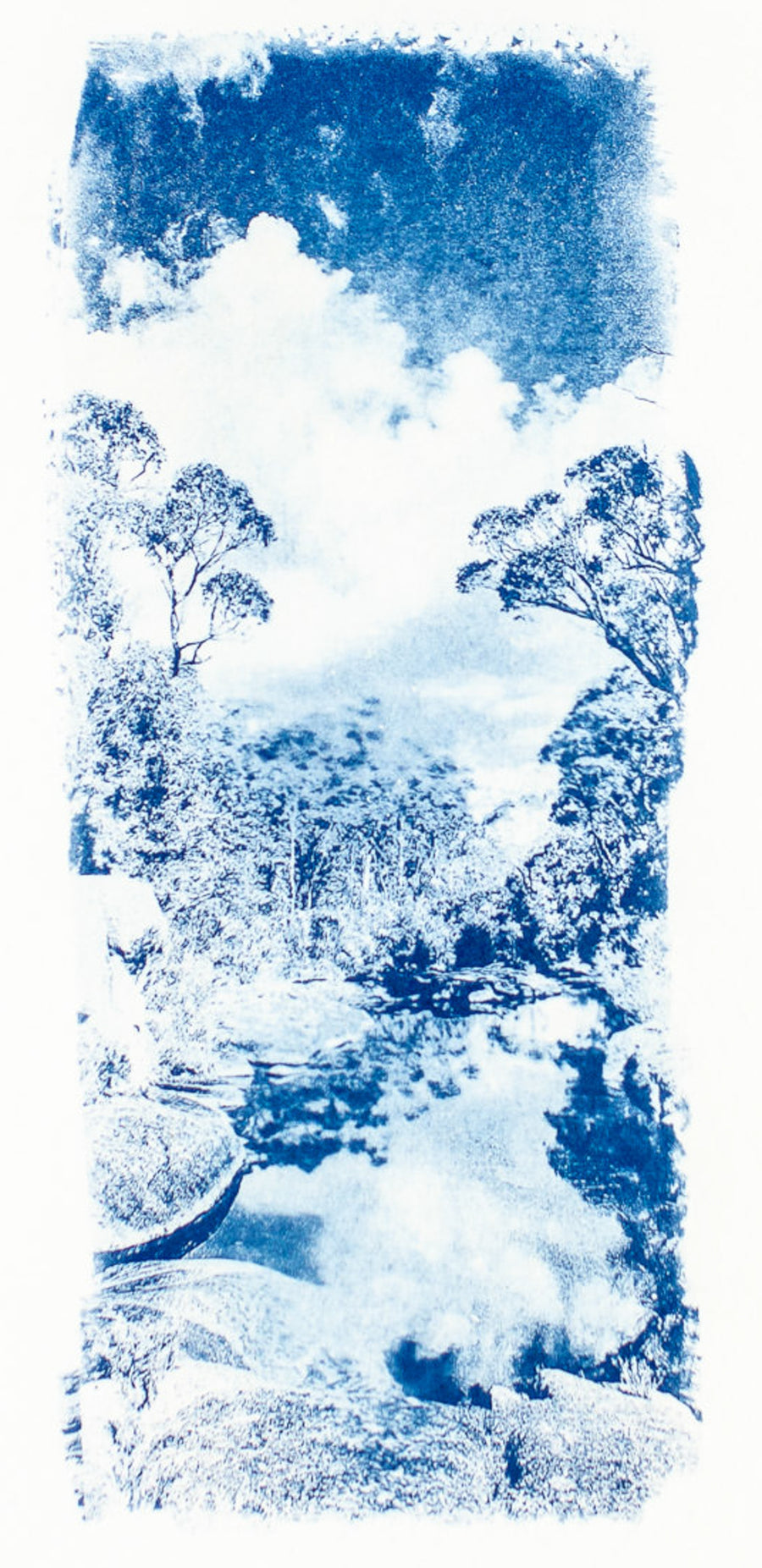Reflection Cyanotype