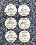 Milestone Plaques (set of 18)