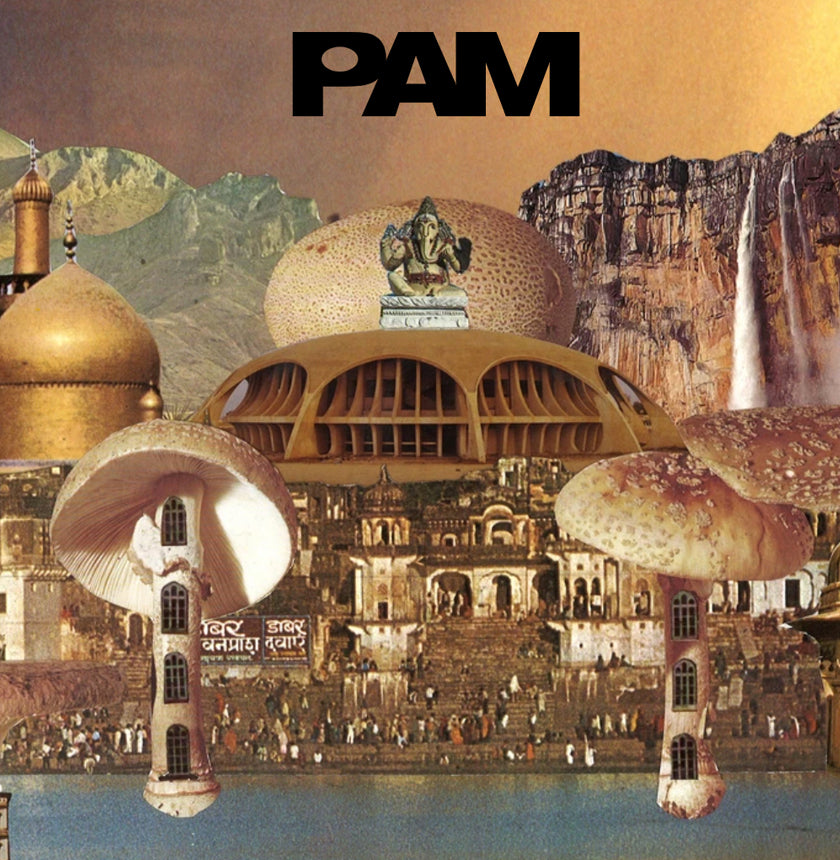 P.A.M. - 'POSITIVE MESSAGES'