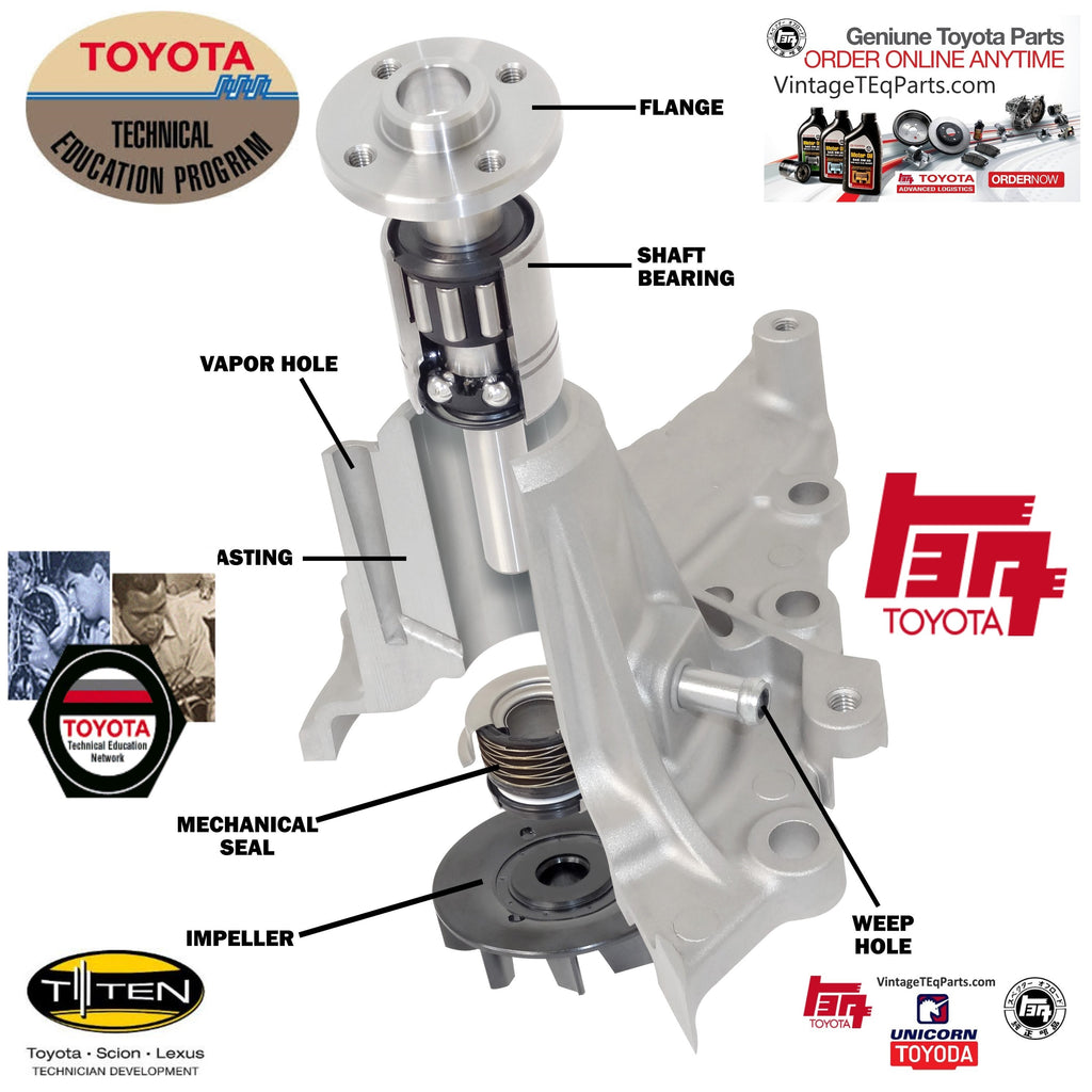 TOYOTA T-TEN Program OEM Water Pump Education Diagrams