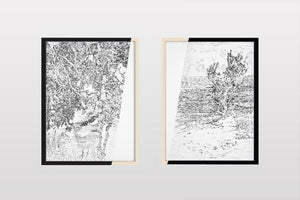 Presente soluble (diptych)