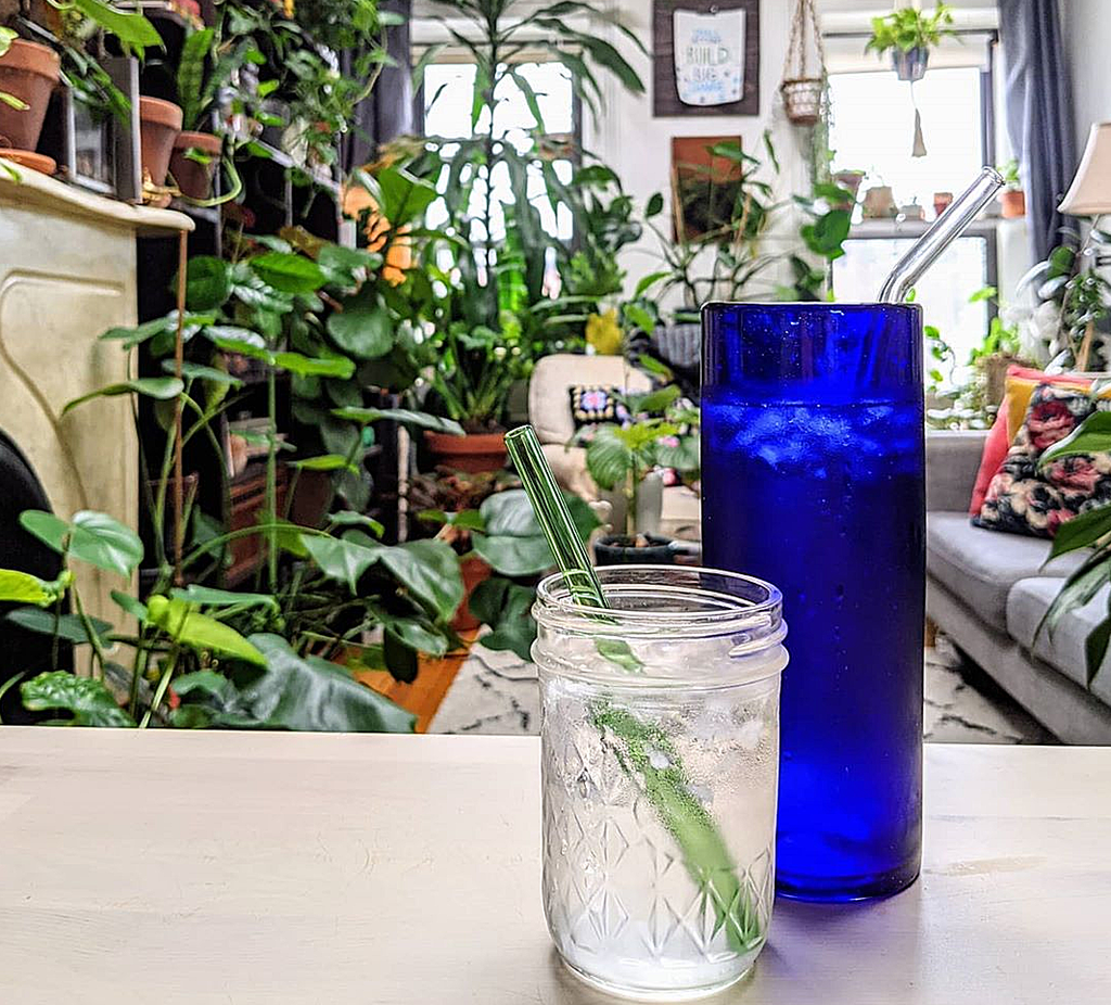 clear glass jar with green glass straw, tall blue glass with clear glass straw on living room table with lush indoor plants in background. Photo by Justin Hoyng