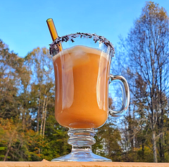 ToMA glass straw in artisanal amber in glass mug of pumpkin iced coffee against fall trees. Photo by Meg Stenzel.
