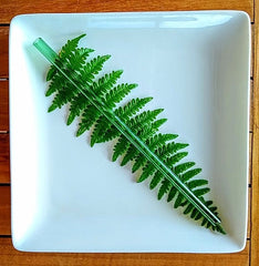 Photo of ToMA glass straw in forest green on fern frond on square white plate.