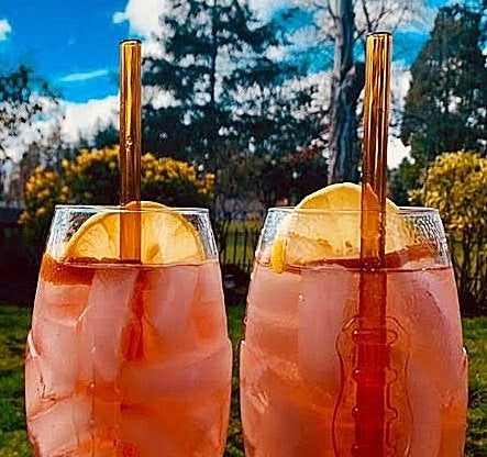 Photo of two golden ciders in clear ice-filled glass with orange slice and ToMA glass straws in artisanal amber against late fall outdoor scene.