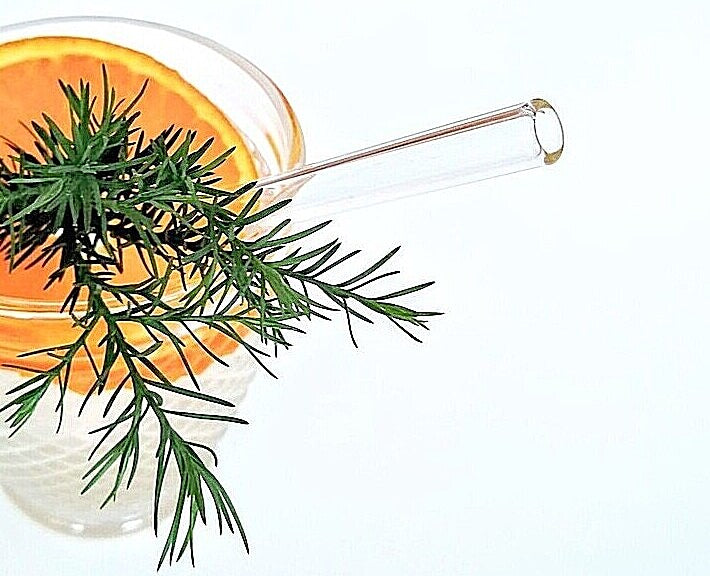 ToMA glass straw in glacier clear in clear glass with orange slice and greenery garnish. White background.