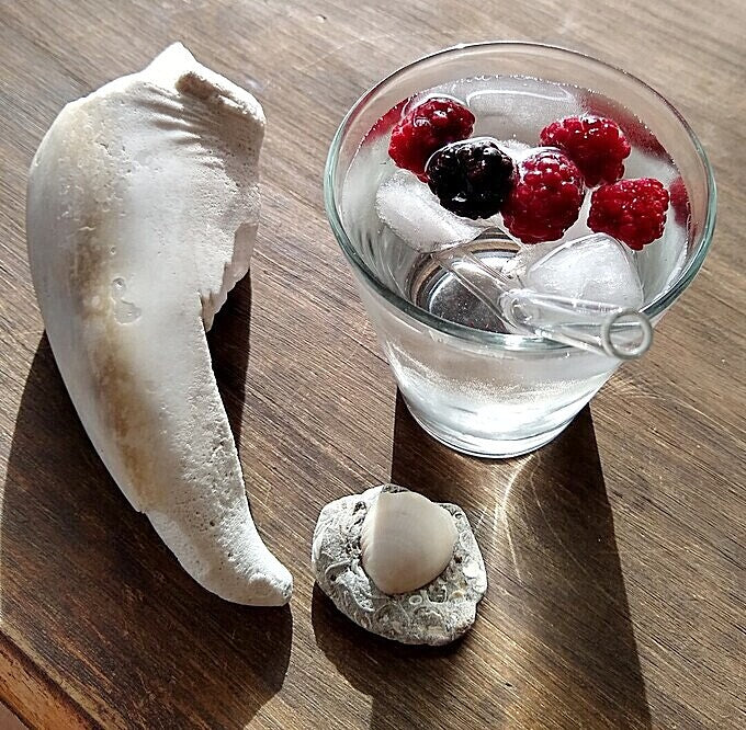 ToMA glass straw in glacier clear in ice water with floating berries. Shell, fossil on scuffed wood table.