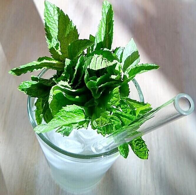 ToMA glass straw in glacier clear in pint glass of ice water with fresh mint leaves. Sunny morning light,  beige wood table.